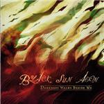Cover of Black Sun Aeon - Darkness Walks Beside Me