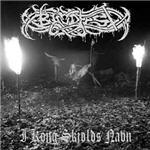 Cover of Blodfest - I Kong Skjolds Navn