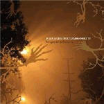 Cover of iM.G.R. y Destruco Swarmbots! - Amigos De La Guitarra