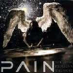 Cover of Pain - 'Nothing Remains The Same'
