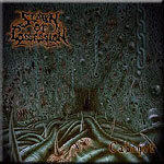 Cover of Spawn Of Possession - Cabinet