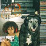 Falling Silence - Dog's Life