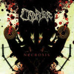 Cover of Cadaver - Necrosis