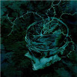 Cover of Nachtmystium - Instinct Decay