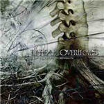 Unreal Overflows - Architecture Of Incomprehension