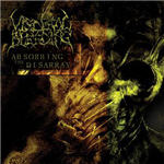 Visceral Bleeding - Absorbing The Disarray
