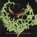 Cover of Inade - 'The Crackling Of The Anonymous'