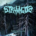 Stryvigor – Forgotten by Ages