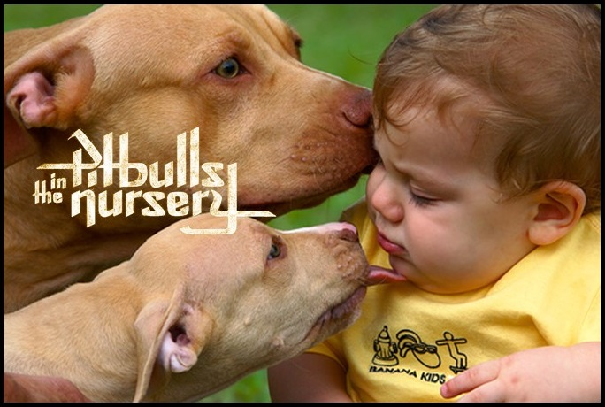 pitbulls nursery
